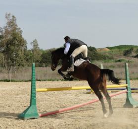 equitazione-monastir-cagliari